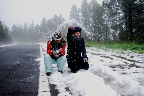 redondel nevado